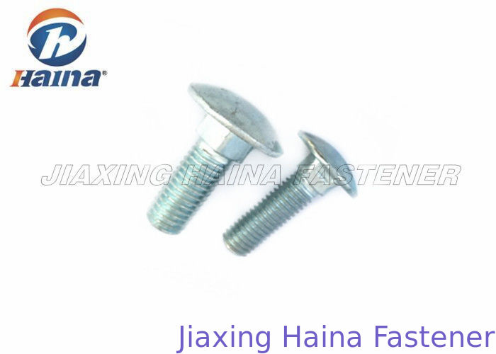 M10 Gr.4.8 Stainless Steel Metric Fasteners / 60mm Length SS Coach Bolts